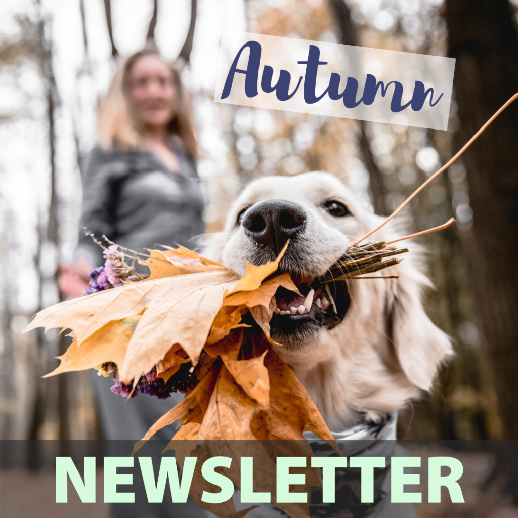 Caring Vets Autumn Newsletter